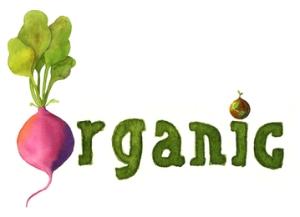 Organic food header