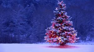 a free christmas tree