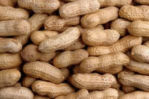 """Buy no peanuts just Cracker Jacks"" 